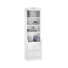 Книжный шкаф Rustic