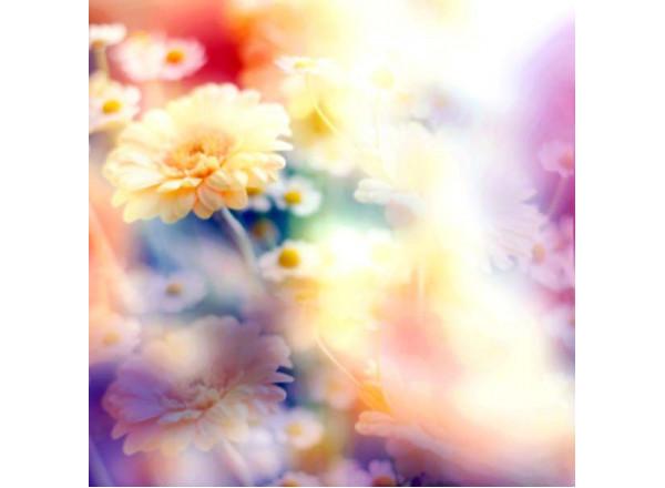 Фотообои Цветы 002