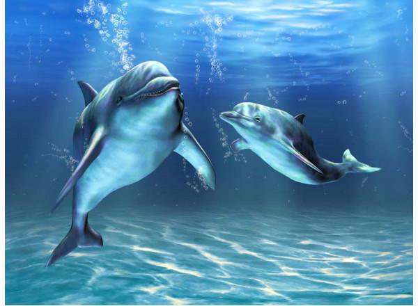 Фотообои Дельфины 002